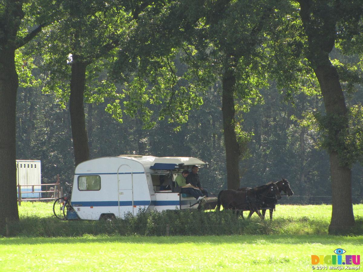 Original Horse Drawn Gypsy Caravan Holidays