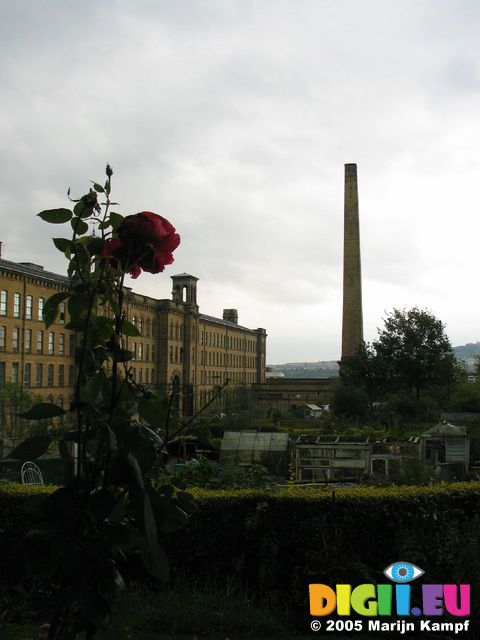 15178 Rose and salts mill