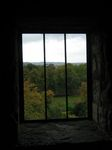 15147 View from tower window.jpg