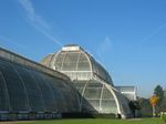 15396 Palm house - Victorian Glasshouse.jpg