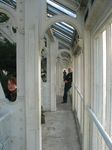15456 Jenni and Hans in the temperate house.jpg