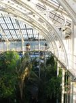 15466 Temperate house balcony.jpg