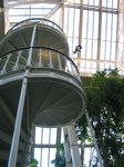 15472 Temperate house spiral staircase.jpg