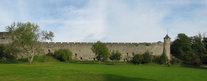23545-23546 Cahir Castle wall from park.jpg