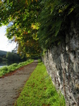 24111 Path by river Suir.jpg