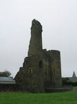 24189 Ferns Castle.jpg