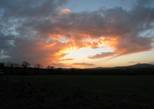 24253-24256 Sunset at Moneylands farm Arklow.jpg