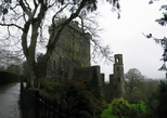 24809-24812 View of Blarney Castle and Round lookout tower.jpg