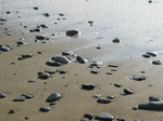 24995 Pebbles on beach.jpg