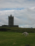 26918 Doonagore Castle with out of focus flower.jpg