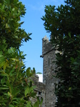 27440 Cargoile at Waterford Castle through leaves.jpg
