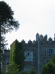27454 Waterford Castle.jpg