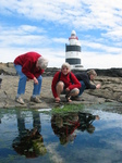 27546 Oma, Machteld and Marjan staring into a pool at Hook Head Lighthouse.jpg