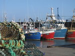 SX01371 Fishing boats in Dunmore East harbour.jpg