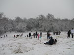 SX02216 People sledding in Hilly Fields Park.jpg