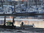 SX02526 Man at boat in Malahide Marina.jpg