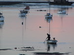SX02548 Man on boat in Malahide Marina.jpg
