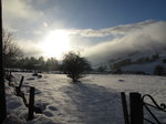SX02567 Shadow of tree on snow in Wicklow mountains.jpg