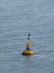 SX03111 Yellow bouy in sea Milford Haven.jpg