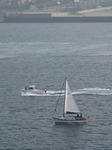 SX03423 Small motorboat and sailboat in Milford Haven.jpg