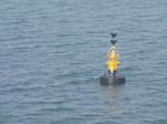SX03472 Yellow buoy in Milford Haven.jpg