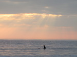 SX03507 Surfer waiting for wave at Ogmore by Sea.jpg