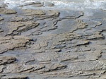 SX05167 Layers of rock slabs at beach.jpg
