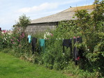SX06912 Wetsuits drying on line.jpg