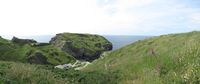 SX06919-06924 Tintagel Head and Castle framed by Foxglove (digitalis purpurea) from Barras Nose.jpg