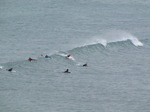SX06998 Surfers paddling for wave at Bude.jpg