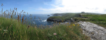 SX07185-07190 View past Barras Nose to cliffs from Tintagel Island.jpg
