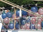 SX07482 Purple and pink bouys on boat in Padstow harbour.jpg