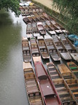 SX07750 Rain on boat hire in River Cherwell, Oxford.jpg