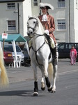 SX07889 White horse in parade at Brecon Jazz.jpg
