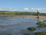 SX07941 Wouko skipping stone on Ogmore River.jpg