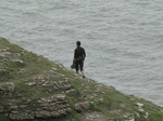SX08013 Wouko walking on cliff towards Southerndown.jpg