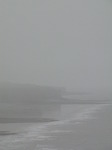 SX08030 Misty view past Southerndown cliffs.jpg