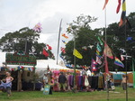 SX08349 Flags over stall.jpg