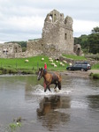 SX08661 Horse crossing river at Ogmore Castle stepping stones.jpg