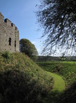 SX09377 View from moat at Restormel Castle.jpg
