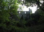 SX09698 Oystermouth Castle wall from surrounding woods.jpg