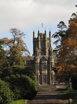 SX09840 Margam Castle framed by autumn tree.jpg