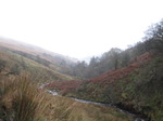SX10725 View down Caerfanell river, Brecon Beacons National Park.jpg