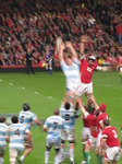 SX10827 Line out rugby Wales vs Argentina Millennium Stadium Cardiff.jpg