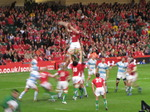 SX10833 Line out rugby Wales vs Argentina Millennium Stadium Cardiff.jpg