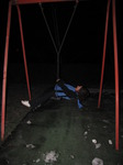 SX11367 Annie on swing.jpg
