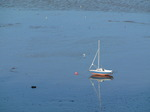 SX11924 Beached sailboat on Swansea Bay mud sands.jpg