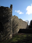 SX12418 Walls of Ewenny Priory.jpg