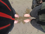 SX13140 Cold feet in wet sand.jpg