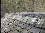 SX13449 Curved roof at Castle Coch.jpg